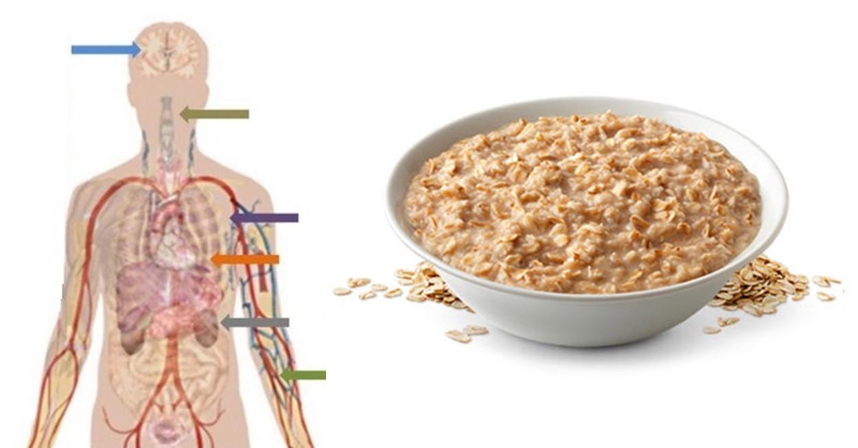 ovesne vlocky a jejich vliv na zdravi